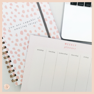Studio Seed Notebooks & Desk Planner