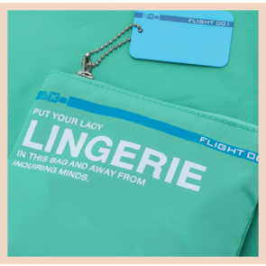 Flight 001- Go Clean Lingerie Bag (Teal)