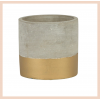 Gold Dip Concrete Planter